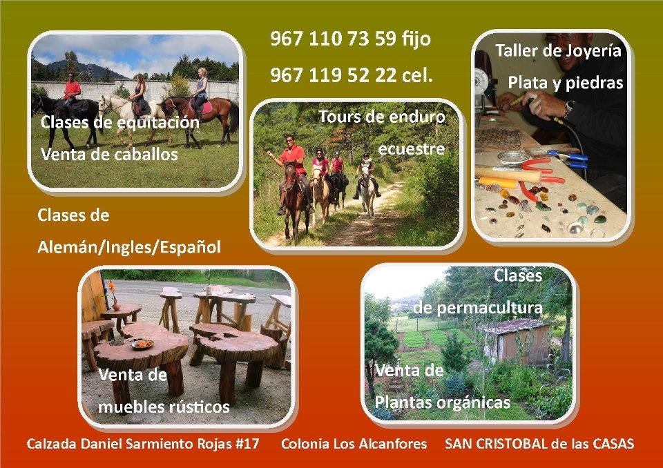 If you are planning on visiting San Cristóbal de las Casas, Oliverio has rooms for rent, rents horses and gives guided tours. He also makes jewelry, rustic furniture and sells organic vegetables.