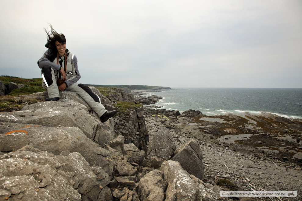 Newfoundland Winds