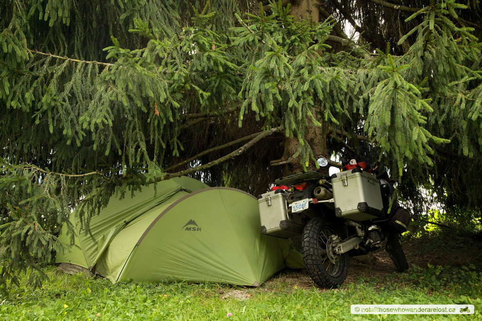 Camped Under A Big Tree